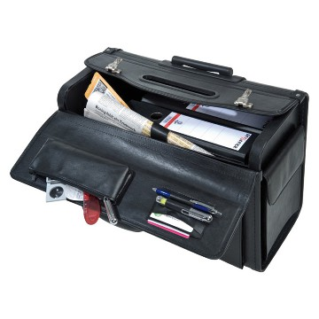 Document and pilot trolley