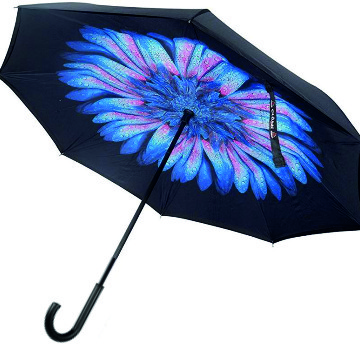 Blue Daisy Ladies Inside Out Inverted Umbrella